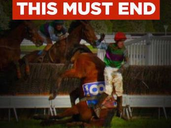 How many horses must die before cruel and barbaric jumps racing is banned?