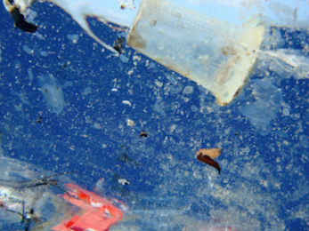 Plastic oceans and our health: What we can do