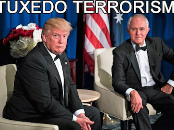 The cost of Trumble's role as little brother-in-arms to Big Brother Trump