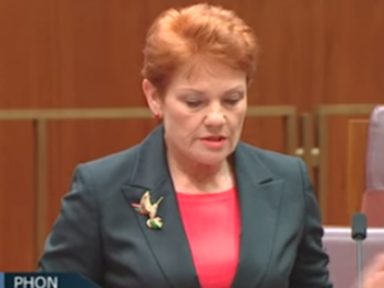 Hanson's autism remarks miss the point of NDIS, Gonski and so much more