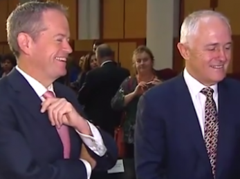 Shorten, Turnbull and four-year terms