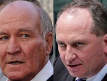 The resurrection of Tony Windsor