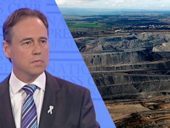 Greg Hunt's cultivated optimism gets us nowhere