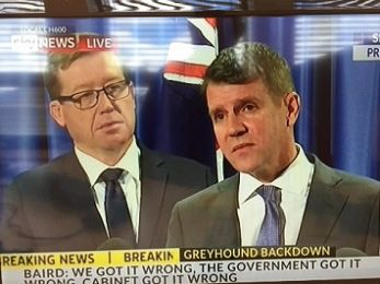 NSW passenger Premier Mike Baird backflips on greyhound ban