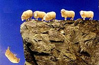 Leading-Sheep-Astray