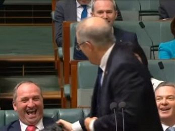 Coalition MPs giggle, cackle, smirk and laugh in Parliament over climate change