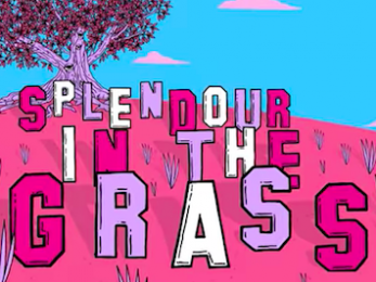 Splendour in the Grass line-up fails to represent female artists