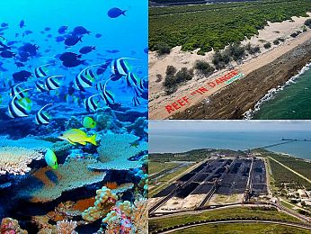 Dumping on the Reef: The Abbot Point disaster (Part Two)