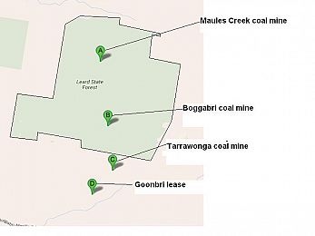 The Leard Forest Maules Creek coal mine ecological disaster