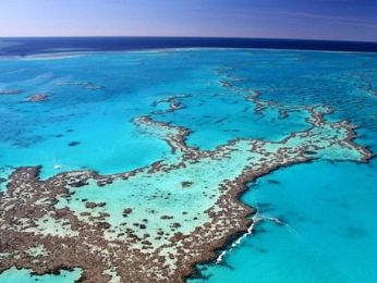 Go-ahead for mega-coal mine threatens the Great Barrier Reef and the Great Artesian Basin