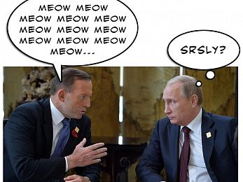 The Shirtfront Chronicles