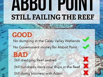 Reef in peril as new Qld Government waves through Abbot Point expansion