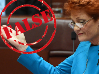 Ms Hanson: How can we be One Nation if you pit Australian against Australian?