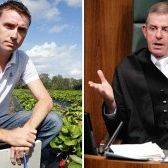 The Peter Slipper illusion