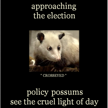 Policy possums
