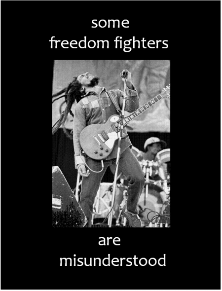 Freedom Fighter 1