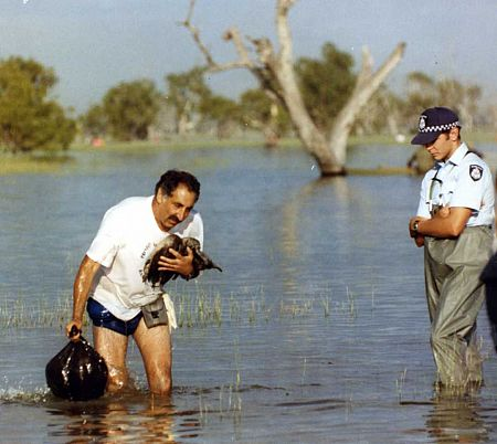 Laurie Levy recovering illegally shot freckled ducks Lake Buloke 1993
