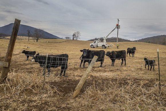 A community fix for Australia's second-rate rural broadband