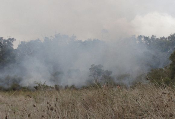 Australia will continue to burn unless Indigenous voices are heard