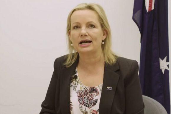 Sussan Ley's largesse: Koalas failed to make the grade