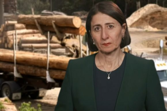 Berejiklian Government's destructive path protected by the law