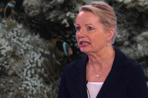 Sussan Ley keeps environment a national emergency