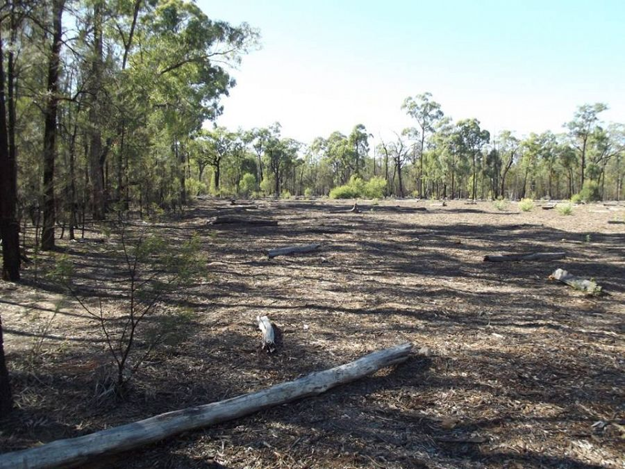 Santos pond liner fails putting pilliga and great artesian for Putting in a pond
