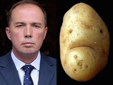 Image result for Images of a right wing Dutton