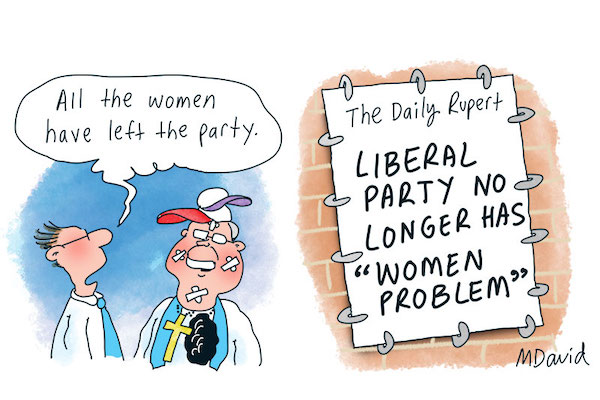 Julie Bishop and the Liberal Party women