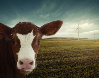 Corporate spin: Meat industry denies accelerating climate change